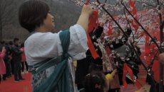 河南桃花节女子着汉服、行古礼祈福