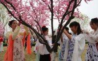 临沂大学花朝盛典 一年中各有哪些花神?