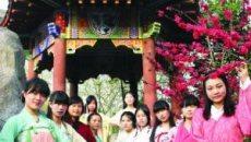 武汉百名学子着汉服演绎桃花文化