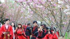 新双浦人着汉服结发共享粉色浪漫