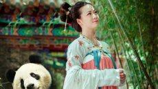 KO周立波偏见 穿汉服喂大熊猫是种啥体验?