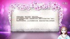 [视频]秦汉两朝的中央官制 - 品味中华风俗节日第七期