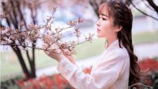 花树下的汉服美女清纯靓丽如花似玉