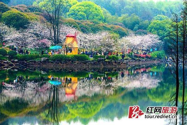 4月2日,丁酉年清明·春日汉服游园会即将在湖南省森林植物园举行,目前正在接受体验家庭组和摄影师组的报名。