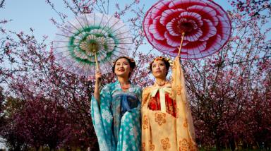 又是一年花朝节 成都姑娘愁汉服穿哪件
