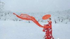 【汉服美图】鹤雪引