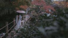 【汉服摄影】千年汉服 绽放在这个令人心醉的秋天
