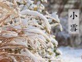 【传统节气】小雪丨今日江山又小雪,诸位看官记得多加件衣裳