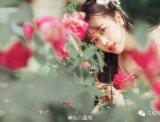 【汉服美图】何须浅碧轻红色,自是花中第一流