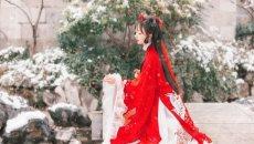 【汉服美图】梅花雪