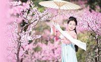 穿着免费抢红包最快的软件说英语 郑舟丹传播传统文化十余年