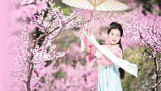穿着汉服说英语 郑舟丹传播传统文化十余年