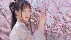 【汉服美景】是谁把春光剪成一树繁花?
