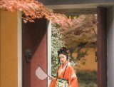 【汉服小仙女】秋风生渭水,落叶满长安