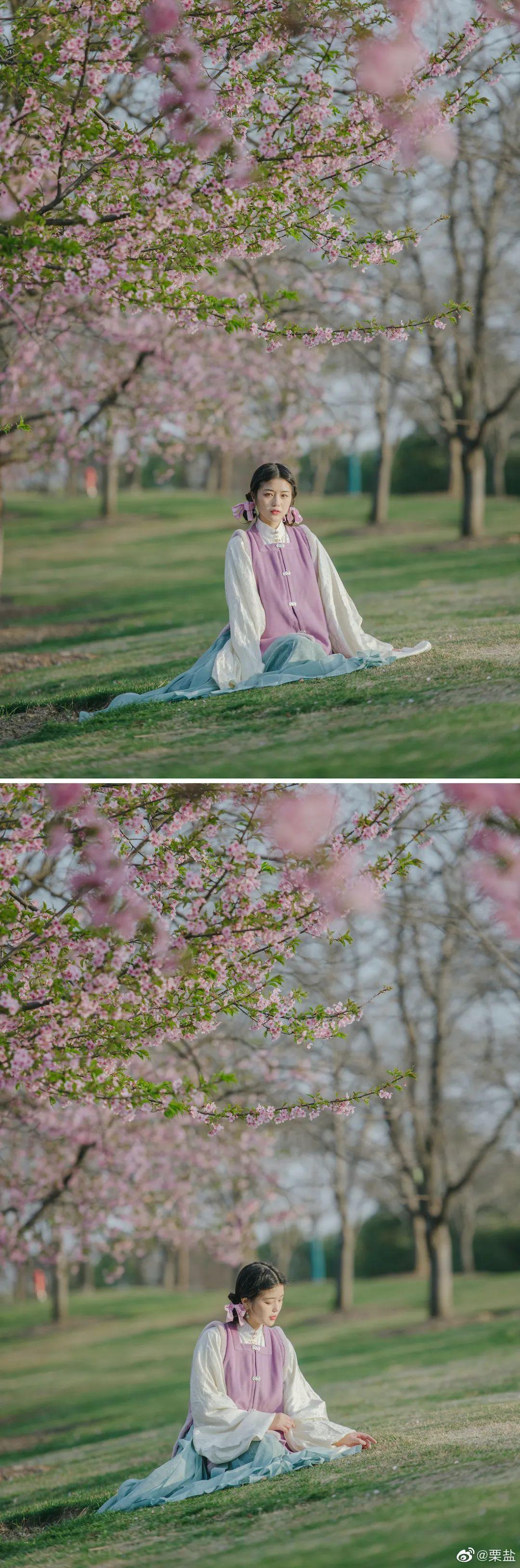 【汉服摄影】樱花树下