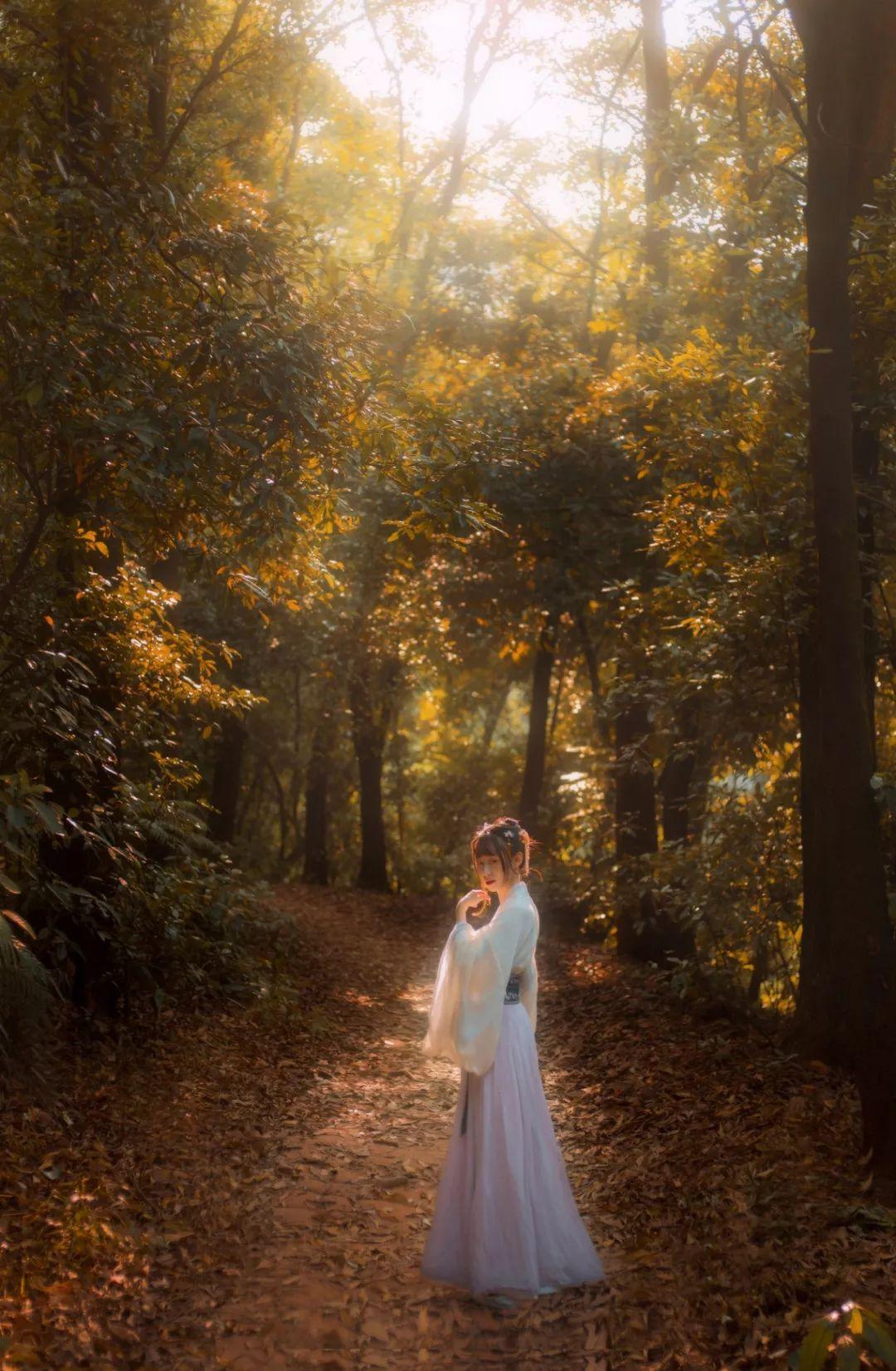 【汉服摄影】霁痕才着树,山意未离云