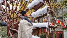 飘雪季 | 好看的人都跟着它的香味走了