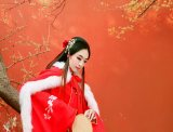 红墙 腊梅 少女