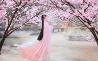樱花开啦~