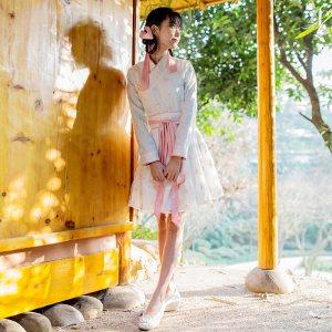 半壶纱-2017秋装新款改良汉服日常汉元素绣花连衣裙短裙女