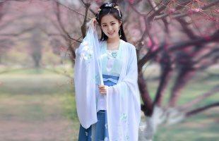 如梦霓裳汉服女装大袖衫[月照梨花]八刺绣花传统定制夏季配襦裙穿