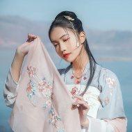 汉尚华莲传统汉服碎玉上衣女装春夏装对襟半臂日常百搭绣花两色