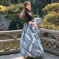 中国风日常改良汉服夏装汉元素上衣连衣裙春夏套装时尚复古风女装