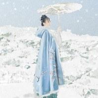 衔泥小筑西湖十景汉服女装刺绣披风斗篷冬季加绒 加厚 断桥残雪