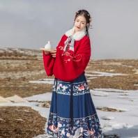 汉尚华莲凤语舞传统汉服女装印花红色马面裙日常秋冬下装大摆袄裙