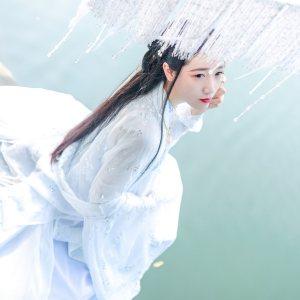 山有扶苏 原创仙府之路 传统汉服女单品烫银仙鹤大袖衫