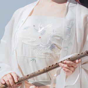 重回汉唐玉枕纱吊带原创免费抢红包最快的软件女配饰中国风背心抹胸内搭襦裙夏装