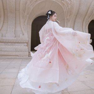 重回汉唐汉服女夏季千风鹤夜大袖衫女单件披风外套绣花中国风日常