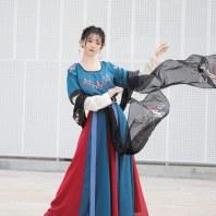 【卿玉堂】梨花渡原创古中国风汉服女坦领半臂一片式齐腰襦裙套装
