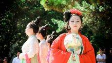 4月11日上海植物园牡丹园 周末穿汉服免费逛上海花展