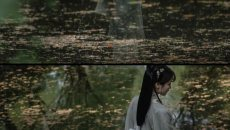 【汉服摄影】香残沈水缕烟轻,花影阑干人静